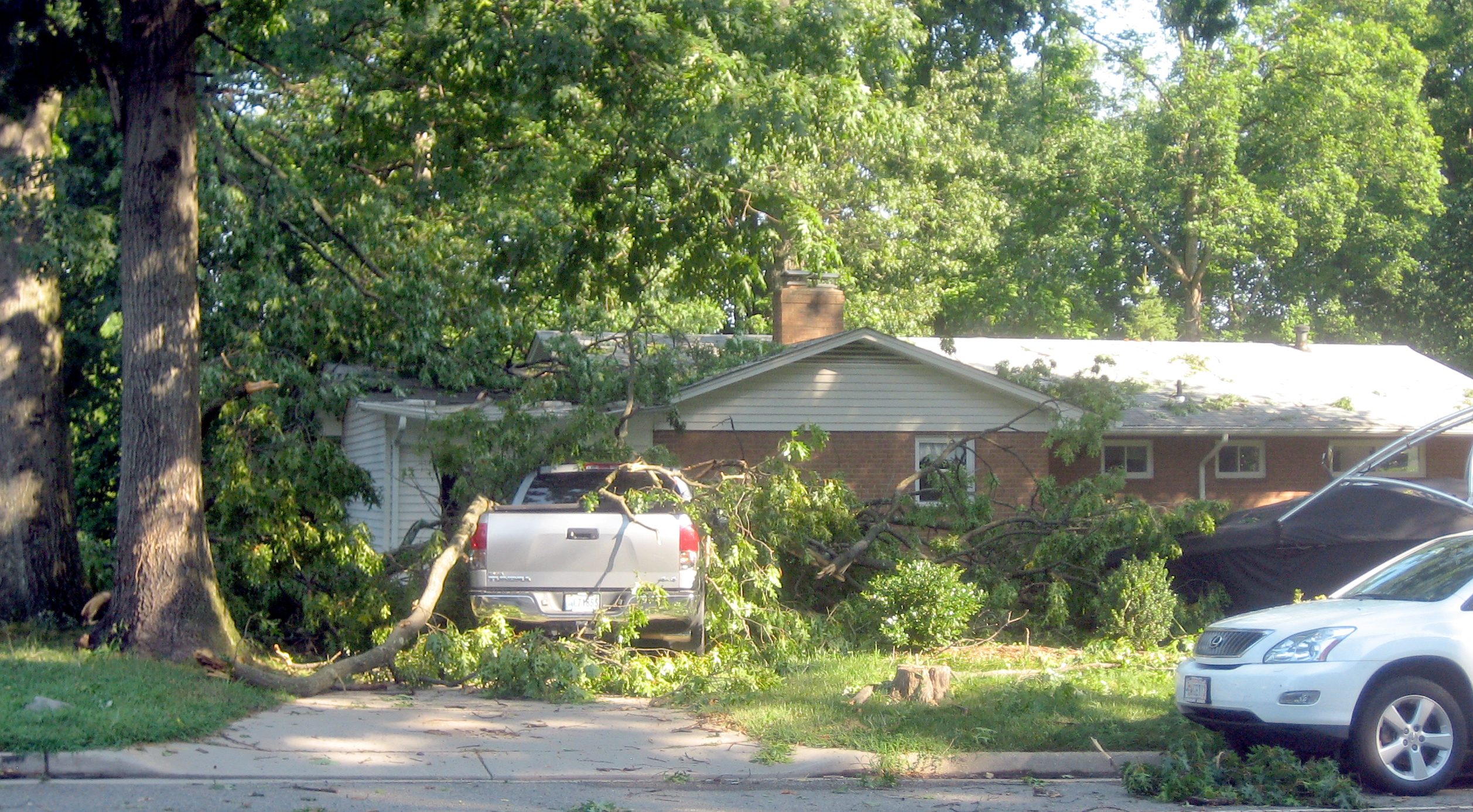 tree hit your house 4 steps to follow fairfax county emergency