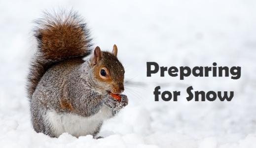 preparing for snow