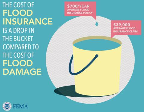 the cost of flood insurance versus flood damage